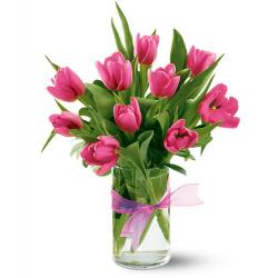 Spring Tulips - Hot Pink