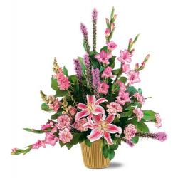 Triumphant Triangle