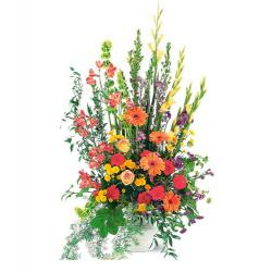 Summer Sentiments Arrangement