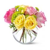 Teleflora's Pink Lemonade Roses