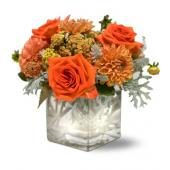 Teleflora's Perfect Orange Harmony