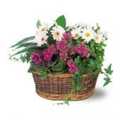 Traditional European Garden Basket