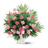 Classic Carnation Arrangement
