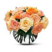Perfect Pastel Roses