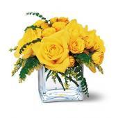 Yellow Rose Bravo!