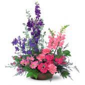Garden Fresh Blooms