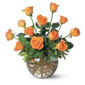 A Dozen Orange Roses