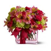 Teleflora's Cheers To You